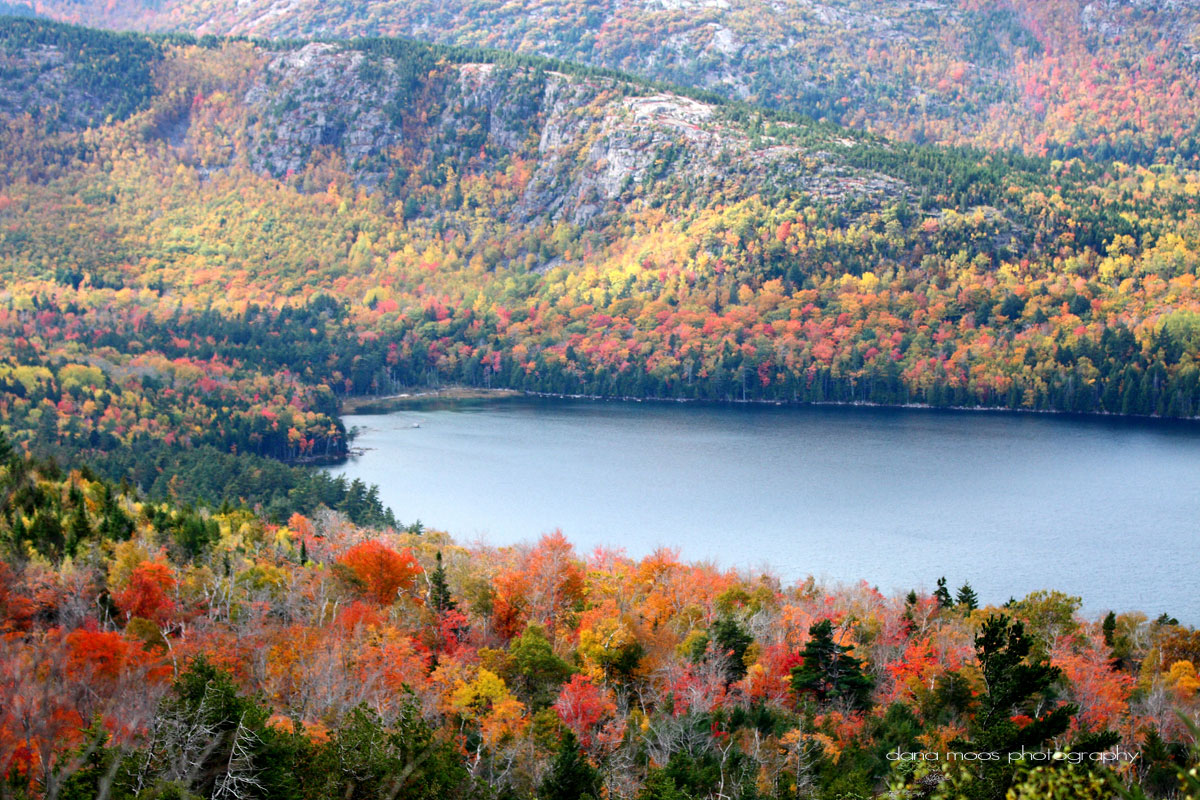 Fall Foliage in Acadia National Park Maine